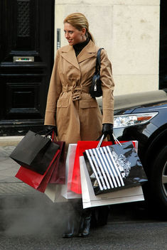 shopping - Kostenloses image #313899