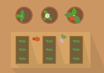 FREE PLANT FROM TOP VECTOR - бесплатный vector #317699