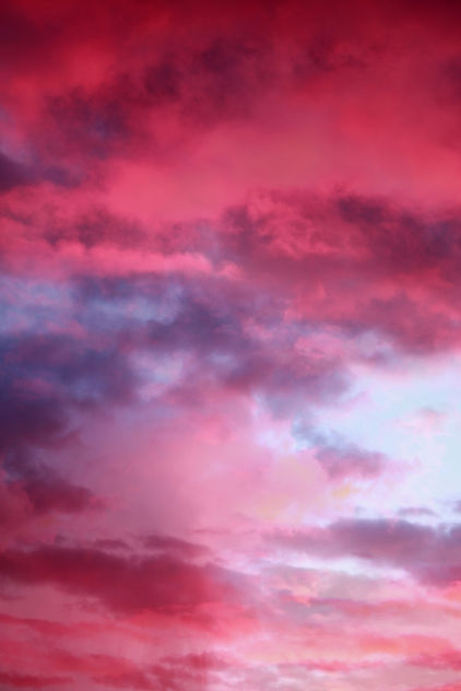 Free sunset flamingo pink colorful clouds texture for layers - Free image #318469