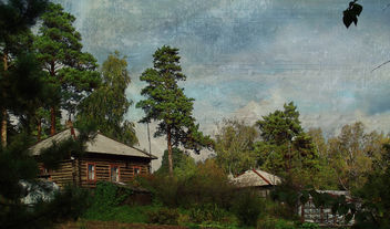 Cottage in the woods - Kostenloses image #323089
