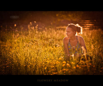 in the meadow - Kostenloses image #323449