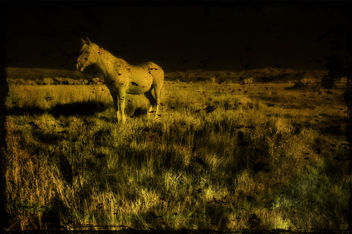 midnight - image gratuit(e) #323929
