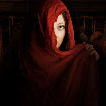 Red Riding Hood - image #324089 gratis