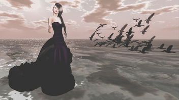 The girl who wanted to marry her crows - image #325859 gratis