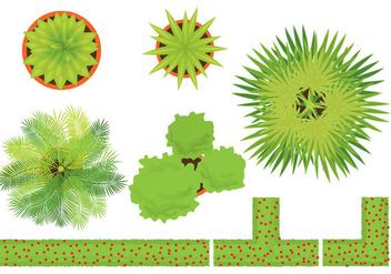 Plants Vectors - vector gratuit #326589