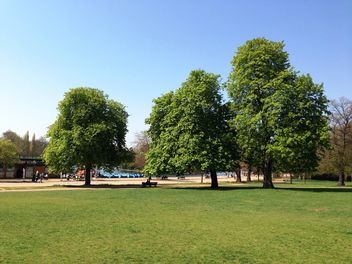 Summer in Hyde park - Free image #328409