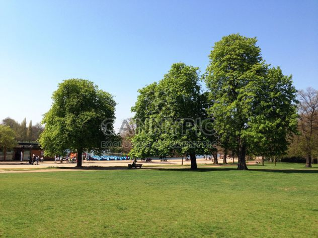 Sommer im Hyde park - Kostenloses image #328409
