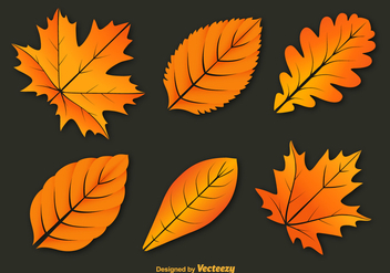 Colorful autumn leaves vectors - vector gratuit #328799