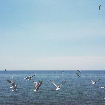sea - image #329279 gratis