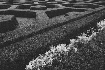 Garden pattern - image #329569 gratis