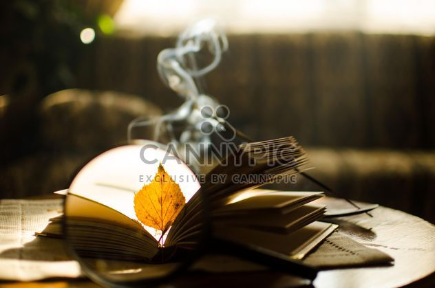 Autumn yellow leaves through a magnifying glass and incense sticks and book - Free image #330399