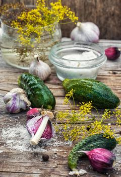 salted cucumbers with garlic - image #330719 gratis