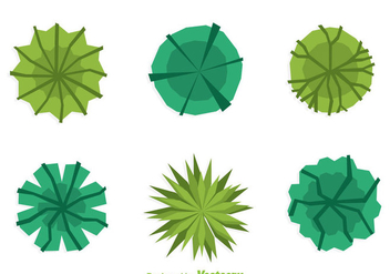 Plant Top View Flat Design - vector gratuit #330789