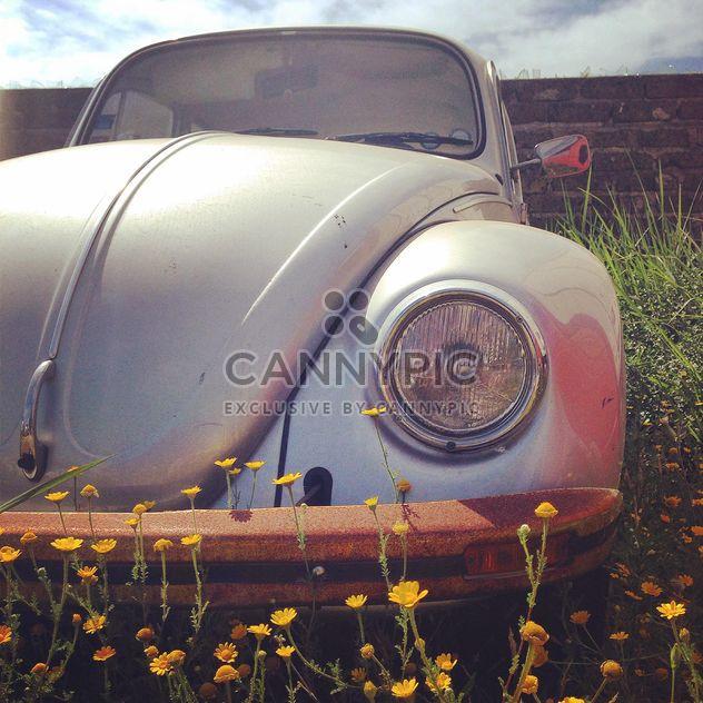 Старый автомобиль на траве - бесплатный image #331359