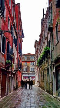 Central streets in Venice - Free image #333619