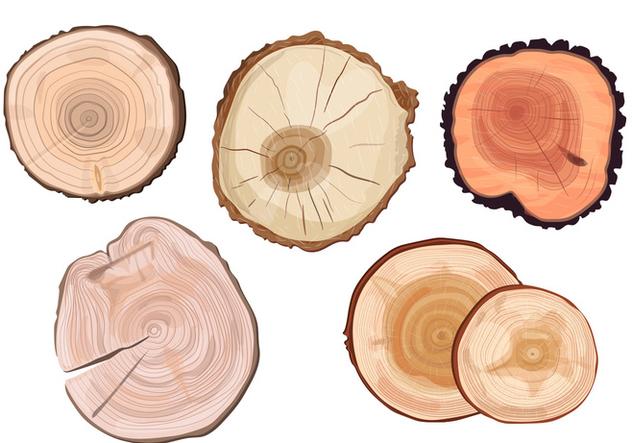 Tree Ring Vectors - vector #334859 gratis