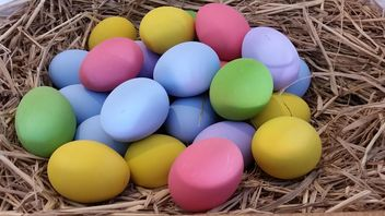 Colorful eggs - image gratuit #335189