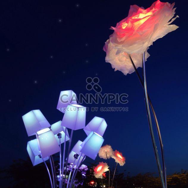 Фонарики в форме цветов - Free image #337919