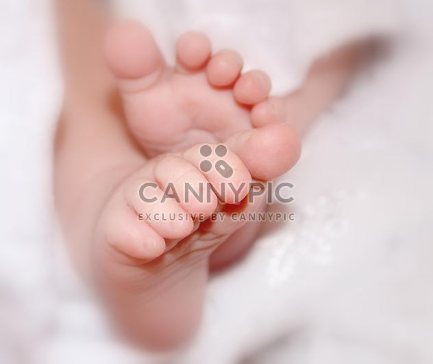 Feet of newborn closeup - Free image #338299