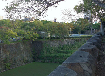 Japan (Osaka) Castle moat covered by green plants and mouds - бесплатный image #339109