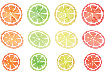 Vector Set of Citruses - Kostenloses vector #339379