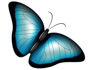 Blue Butterfly - vector #340209 gratis