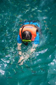 Man swimming between fishes in a mask - image #342529 gratis