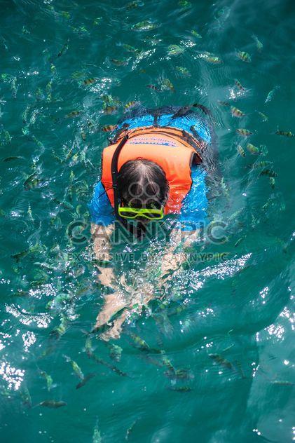 Человек, плавание между рыб в маске - бесплатный image #342529