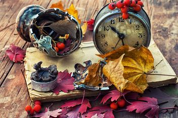 Composition with old clocks, rowan and leaves, - image gratuit #343549