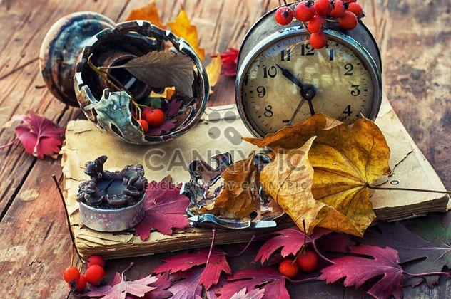 Composición con relojes antiguos, rowan y hojas, - image #343549 gratis