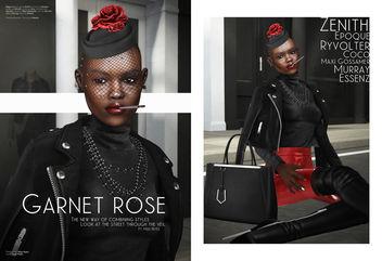Garnet Rose - Free image #344409