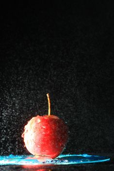 Red apple in water splash on black background - Free image #344559