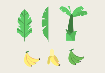 Banana Tree Vector - vector gratuit #345759