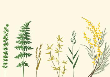 Botanic Illustrations - Kostenloses vector #345979