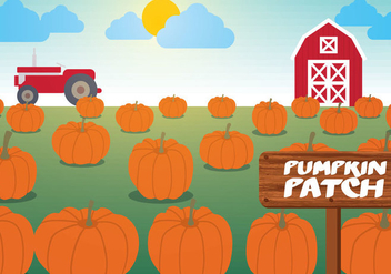 Pumpkin Patch Vector - vector #346359 gratis
