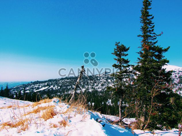 Winter landscape with mountains in snow - Free image #347029