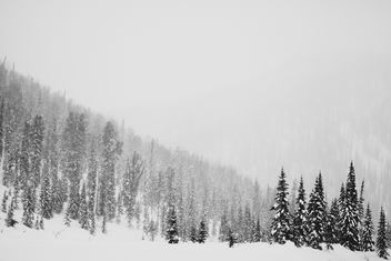 Snow-covered mountains and trees, Siberia,Taiga - image #347739 gratis