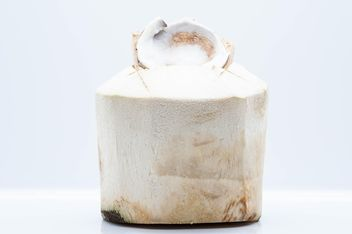 Young coconut on white background - image gratuit(e) #347759