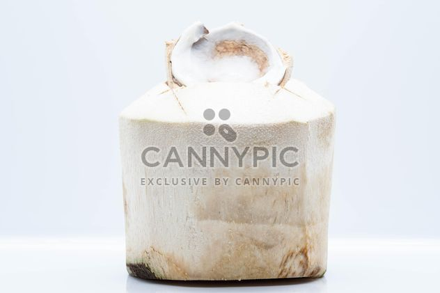 Young coconut on white background - бесплатный image #347759