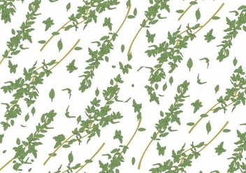 Thyme Vector Background - vector #349609 gratis
