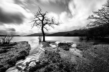 Lock Lomond - Scotland - Landscape photography - Free image #349739