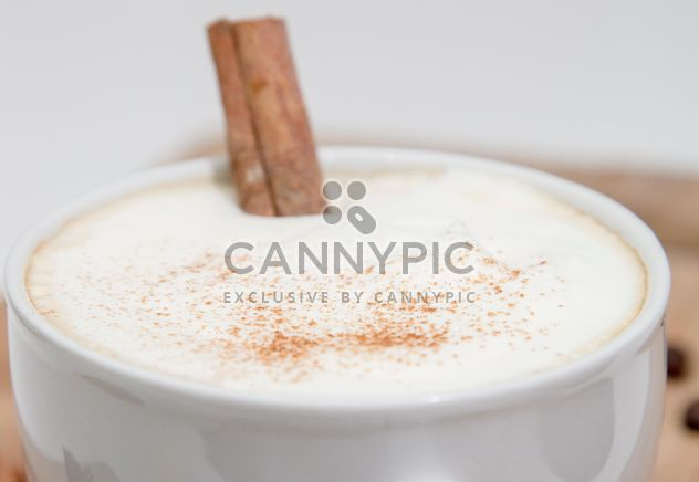 Cup of cappuccino with cinnamon - Free image #350299