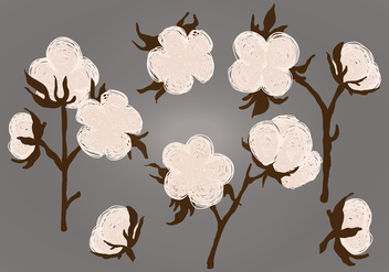 Vector Cotton Plant Illustration - vector #350559 gratis