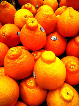 Oranges - image gratuit #351079