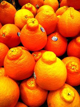 Oranges - Free image #351079