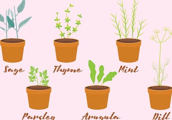 Vector Herbs in Pots - vector gratuit #351829