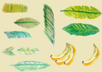 Free Banana Leaves Watercolor Vector - vector gratuit(e) #352439