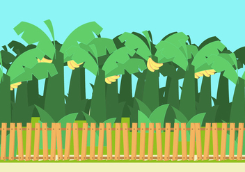 Banana Trees Vector - бесплатный vector #355169