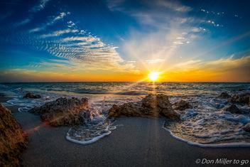 My Florida - Free image #356469