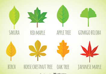Leaf Flat Icons Vector - vector #357599 gratis